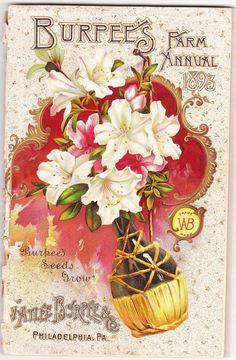 1893 Burpee Seed Catalog Vintage Labels, Vintage Ephemera, Vintage Ads, Garden Catalogs, Seed Catalogs, Burpee Seeds, Seed Art, Vintage Seed Packets, Mushroom Fungi