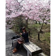 【shimazaki_sakura】さんのInstagramをピンしています。 《Thats why i love japan  #japan #sakura #girl #おんなのこ #日本語 #桜》