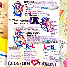 this one is dedicated to my lovely friend and fellow med student @miapiv who happens to have tetrology of fallot, and is the reason why I'll never ever forget what that is #congenitalheartdisease #CHD #heart #heartdefect #cardiac #cardio #medical #relevance #friends #ToF #medicine #med #medschool #anatomy #knowyouranatomy #instaanatomy #science #boardsprep #study #USMLE #smartwork #knowledgeispower