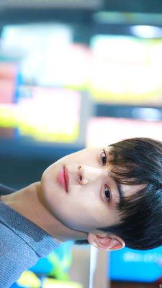 Astro Wallpaper, Cute Panda Wallpaper, Korean Bands, South Korean Boy Band, Drama Korea, Korean Drama, Cha Eunwoo Astro, Kdrama Actors, Cha Eun Woo