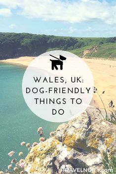 6 Dog-Friendly Things to Do in Wales Between its beautiful scenery and rich history, there's so many things to do in Wales on a holiday trip. And even better, many of the best attractions are dog-friendly. Backpacking Europe, Europe Travel Tips, Travel Guides, Travel Destinations, Holiday Trip, Holiday Travel, Holiday Ideas, Cool Places To Visit, Places To Go