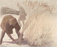 Høst af tagrør, sen bronzealder, Brandenburg – Schilfernte, Spätbronzezeit, Brandenburg – Reed harvest, Late Bronze Age, Brandenburg