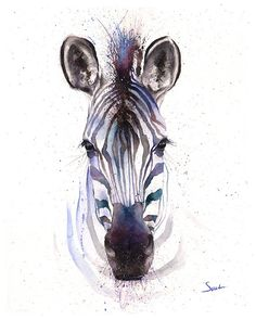 Zebra watercolor painting by artist Eric Sweet