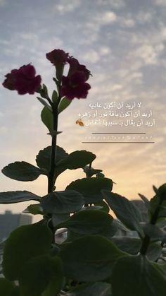 Flower Aesthetic, Aesthetic Hair, Jumma Mubarak Images, Girly M, Postive Quotes, Beautiful Arabic Words, Pretty Flowers, Cute Drawings, Quotations