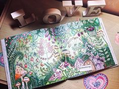 Enchanted Forest/Johanna Basford/Enchanted Forest Coloring Book/