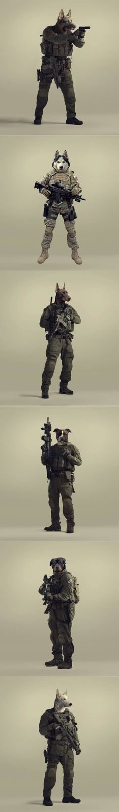 War Dogs Tactical Loadout @aegisgears