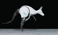 BionicKangaroo is a robot from German engineering company Festo that mimics the unique movement of kangaroos to save energy. The robot uses a combination