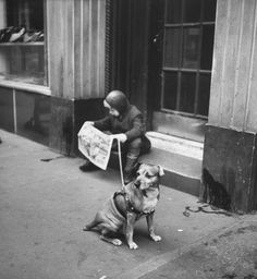 Nina Leen for LIFE - A boy reads the comics while his dog sits by,. NYC 1944. S)