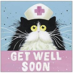 Get Well Soon Images, Get Well Soon Quotes, Cat Cards, Greeting Cards, Get Well Wishes, Get Well Cards, Cat Gifts, Happy Anniversary, Afternoon Quotes