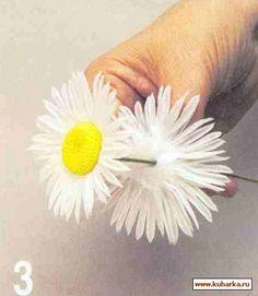 daisy step by step