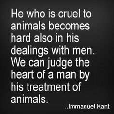 He who is cruel to animals becomes hard also in his dealings with men. We can judge the heart of a man by his treatment of animals. Immanuel Kant