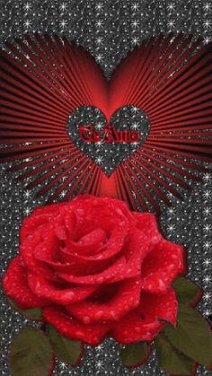 Rose Flower Wallpaper, Flowers Gif, Heart Wallpaper, Love Wallpaper, Beautiful Flowers Wallpapers, Beautiful Rose Flowers, Love Rose, I Love You Honey, Love You Gif