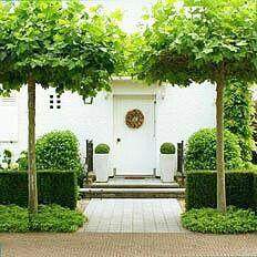 Front garden home Entrance