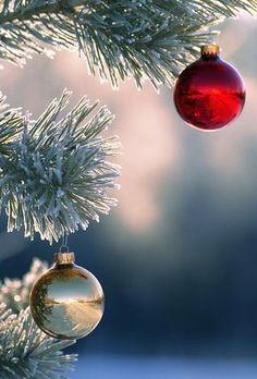 Christmas Ornaments by Carson Ganci noel Plus