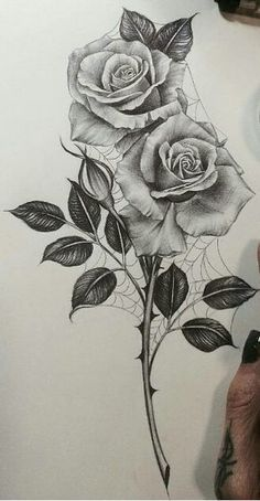 Black and white roses realistic rose tattoo, rose drawing tattoo, realistic flower drawing, Realistic Flower Drawing, Realistic Rose Tattoo, Pencil Drawings Of Flowers, Flower Art Drawing, Flower Sketches, Pencil Art Drawings, Art Drawings Sketches, Tattoo Sketches, Tattoo Drawings