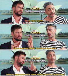 Chris Hemsworth explains why Thor wasn't in Civil War Funny Marvel Memes, Dc Memes, Avengers Memes, Marvel Jokes, Marvel Dc Comics, Marvel Heroes, Marvel Avengers, Fangirl, Chris Hemsworth Thor
