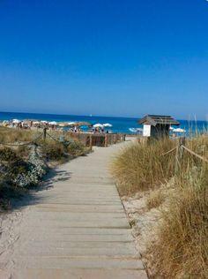 Tower lake beach 2015