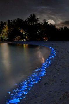 Beautiful Nature (magics-secrets: Night sea by Olga Scheglova) Beautiful Moon, Beautiful World, Beautiful Places, Beautiful Pictures, Wonderful Places, Landscape Photography, Nature Photography, Night Sea, Beach Night