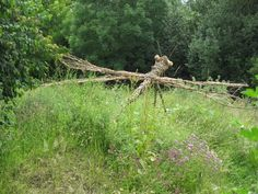 Dragonfly ~ Paul Goodrick  #eco_art #art #nature #aesthetics