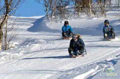 Mange tror at kjelkekjøring er litt kjedelig og passer best for barn, men da har de ikke prøvd seg i løypa i Dagali Fjellpark, som er Norges lengste!