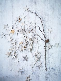 Birch Scatter Stars from Cox and Cox Christmas Feeling, Noel Christmas, All Things Christmas, Winter Christmas, Christmas Crafts, Christmas Decorations, Christmas Trends, Beach Christmas, Star Decorations