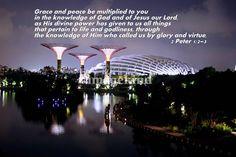 Favour Cityscape Singapore