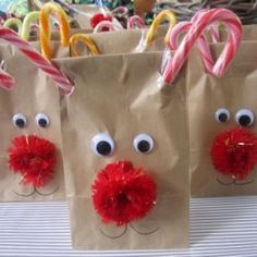Rudolf bags for kids class