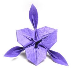 Origami iris flower intermediate level