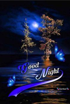 Good Night Messages, Good Night Moon, Good Morning Good Night, Good Night Quotes, Day For Night, Morning Msg, Good Night Blessings, Good Night Wishes, Sweet Night