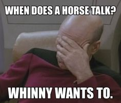 When does a horse talk? Whinny wants to.