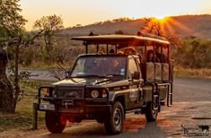 South Africa Tours I Private & Guided Tour Packages - Cape Town Top 10 Tours, Excursions & Things To Do (Shore Excursions - Honeymoon - Experiences - Tickets -Trips & Activities) - Johannesburg - Durban-Garden Route - Luxury Safari & Custom Full Day Safari Online, St Lucia Hotels, Game Reserve, Tour Operator, African Safari, Day Tours, Cape Town, South Africa, Journey