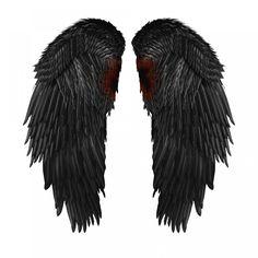 Wings —