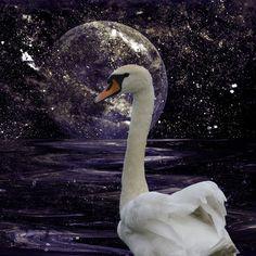 'Mondmagie - Moonmagic' von Chris Berger bei artflakes.com als Poster oder Kunstdruck $20.79