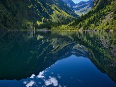 La France nature : les Alpes : Geo.fr
