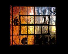 by Stephen Wilkes Ellis Island, Orange Color, Objects, Fine Art, Corridor, Sunset, Places, Lost, Window