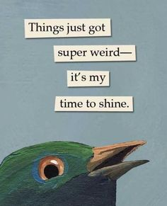 This needs to be added to my decor haha Haha, The Wicked The Divine, Bird Quotes, No Time For Me, Make Me Smile, Just In Case, Decir No, I Laughed, Laughter