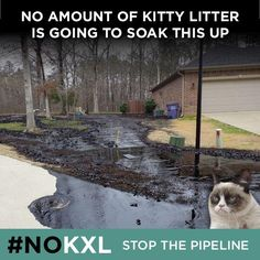 Stop the KXL Pipeline NOW!! Before it's too late... AGAIN.