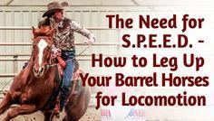 The Need for S.P.E.E.D. - How to Leg Your Barrel Horses Up for Locomotion | BarrelRacingTips.com