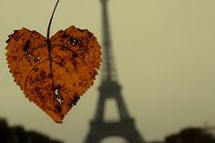 Até quem nunca foi a Paris sabe: a cidade tem um clima irresistivelmente romântico no ar. Tanto que é destino certo para casais apaixonados em busca de inesquecíveis momentos a dois.