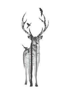 Zwart-wit poster met hert. Posters en prints met natuur motieven. Prints online.