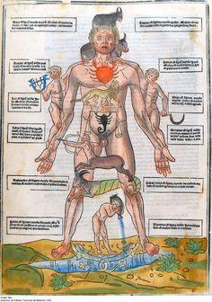 Bharatiya jyotish  mantra saadhana .: Medical astrology and diseases.