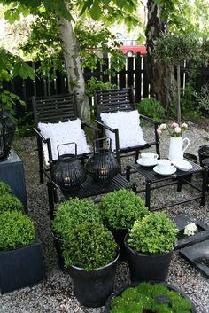 Serene monochrome seating area in small garden