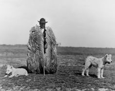 Rudolf Balogh, Shepherd with his Dogs, Hortobagy, c. Hungarian Museum of Photography. © Hungarian Museum of Photography Andre Kertesz, Vintage Photographs, Vintage Photos, Brassai, Royal Academy Of Arts, Photography Exhibition, Folk Music, Gelatin, Black And White Photography