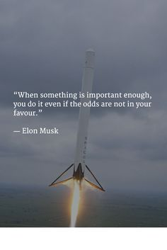 """""""When something is important enough, you do it even if the odds are not in your favour."""" - Elon Musk"""