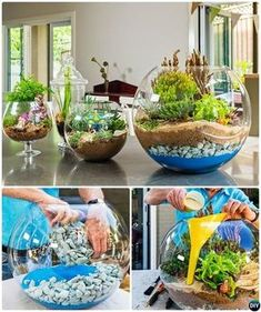 DIY Colorful Sand Terrarium Tutorials: ideas to make sand terrariums which are easy and inexpensive to make to bring fairy gardens into your house! DIY Mini Glasschale Terrarium-DIY Mini Fee Terrarium Garten Ideen Source by lizlauter Stunning Fairy Garden Fairy Garden Plants, Mini Fairy Garden, Herb Garden, Fairies Garden, Fairy Gardening, Gardening Tips, Diy Garden, Garden Ideas Diy, Diy Ideas
