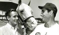 Sandy Koufax and Mr. Ed