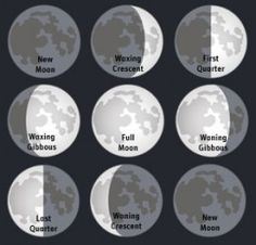 The Phases of the Moon--A Middle School Science Hands On Lesson