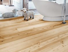 Overview of all references from mafi natural wood floors. See for yourself the benefits of using mafi natural wood floors in private as well as business areas! Natural Wood Flooring, Dark Flooring, Wide Plank, Hotel Lobby, Grand Hotel, Wood Species, Natural Oils, Woods, Hardwood