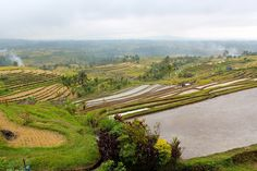 Rice terraces of Jatiluwih, Bali   Sonne & Wolken