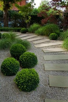 Simplicity in the Garden. Gravel, Stepping Stones and Boxwoods. :: Laara Copley-Smith Garden  Landscape Design